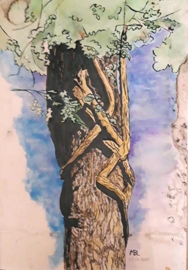 A l'assaut du Chêne Vert