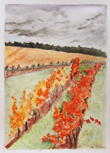 Les vignes de Beauval